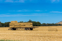Agriculture scene. Farmers trailer loaded with hay bales on a fi Stock Photo