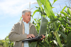Agriculture and science Royalty Free Stock Photography
