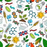 Agriculture, science, genetics seamless pattern Royalty Free Stock Image