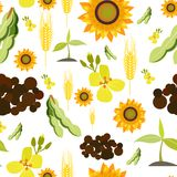 Agriculture seamless pattern. Agriculture farming organic food plant wheat sunflower seamless pattern vector illustration Royalty Free Stock Photography