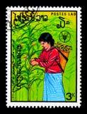 Agriculture, serie de jour de nourriture du monde, vers 1987 Photo libre de droits