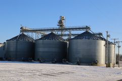 Agriculture silos on factory farm Royalty Free Stock Image