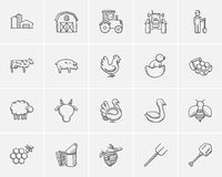 Agriculture sketch icon set. Stock Photos