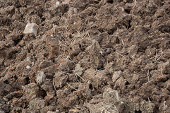 Agriculture soil Royalty Free Stock Photography
