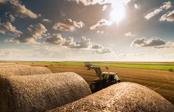 Bale in field Royalty Free Stock Images