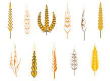 Agriculture symbols Royalty Free Stock Photos
