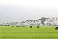 Pivot irrigation system Stock Photo