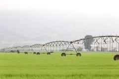 Pivot irrigation system stock photo