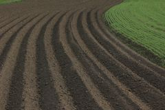 Fertile soil as basis for a functional agricultural cultivation. Agriculture themed background Freshly ploughed field stock photography