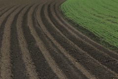 Fertile soil as basis for a functional agricultural cultivation. Agriculture themed background Freshly ploughed field royalty free stock images