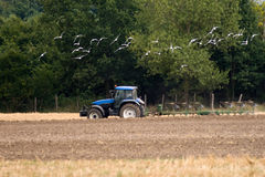 Agriculture tractor Royalty Free Stock Photo
