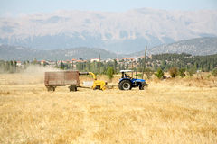 Agriculture and tractor stock image