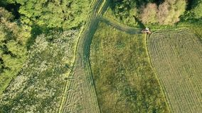 Agriculture tractor cut harvesting summer hay on meadow, aerial stock video footage