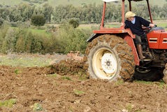 Agriculture tractor plowing Sardinia Stock Images