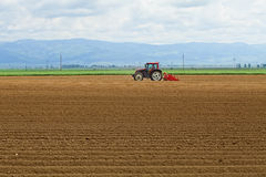 Agriculture - Tractor Sowing Potatoes Royalty Free Stock Photography