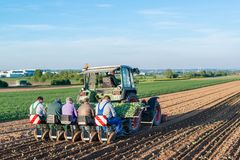 Agriculture - tractor sowing salad Stock Photos