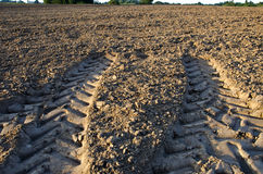 Agriculture Tractor Wheels Traces On Field Soil Stock Image