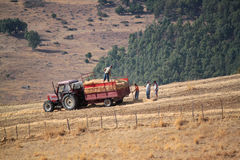 Agriculture tractor Stock Images