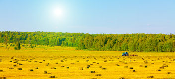 Agriculture tractor in yellow field Royalty Free Stock Images