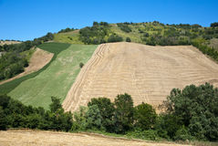 Agriculture in Tuscany - Italy Stock Photos