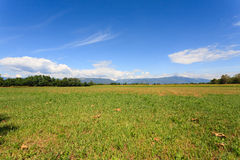 Agriculture, uncultivated field. Uncultivated field with mountains in background. Italian agriculture. Rural scenery Royalty Free Stock Photos