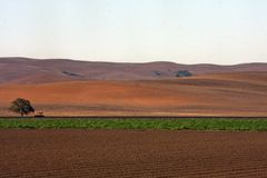 Agriculture in the usa Stock Image