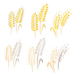 Agriculture vector Stock Images