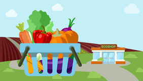 Agriculture vegetable organic field shop market flat vector Royalty Free Stock Photography