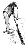 Agriculture vintage illustration, farmer working with a spade to. Agriculture vintage illustration, farmer digs a border with a spade to prepare soil for sowing Royalty Free Stock Photo