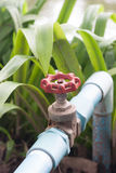 Agriculture water supply. In rural area Stock Photos