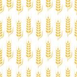 Agriculture wheat vector Illustration design. Agriculture wheat Background vector icon Illustration design Stock Image