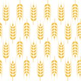 Agriculture wheat vector Illustration design. Agriculture wheat Background vector icon Illustration design Stock Image