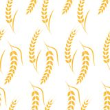 Agriculture wheat vector Illustration design. Agriculture wheat Background vector icon Illustration design Stock Photography
