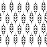 Agriculture wheat vector Illustration design. Agriculture wheat Background vector icon Illustration design Stock Photo