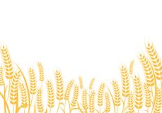 Agriculture wheat vector Illustration design. Agriculture wheat Background vector icon Illustration design Royalty Free Stock Image