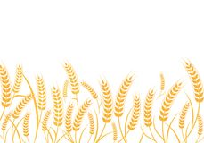 Agriculture wheat vector Illustration design. Agriculture wheat Background vector icon Illustration design Royalty Free Stock Photo