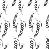Agriculture wheat vector Illustration design. Agriculture wheat Background vector icon Illustration design Stock Images
