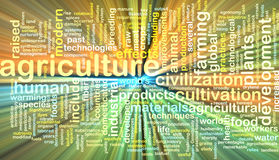 Agriculture wordcloud concept illustration glowing Royalty Free Stock Image