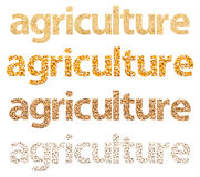 Agriculture Words Abstract Made Of Grains vector illustration