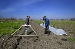Agriculture workers in Latvian countryside Stock Image