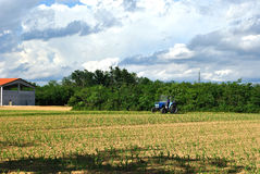 Agriculture works. Agriculture motive - a tractor in a field Stock Photo