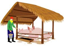 Agriculturist with give food to pig. Design royalty free illustration