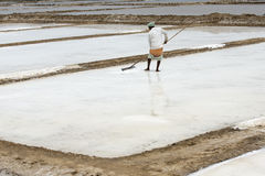 Agriculturist is harvesting salt farm, Pondicherry arera Royalty Free Stock Photography