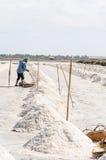 Agriculturist is harvesting salt farm. Royalty Free Stock Photos