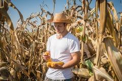 Agriculturist w polu Obrazy Royalty Free