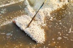 Agriculturist zbiera soli gospodarstwo rolne Zdjęcie Royalty Free