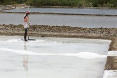 Agriculturist zbiera soli gospodarstwo rolne, Pondicherry arera Zdjęcie Stock