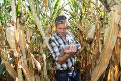 Agricuture moderno Fotografie Stock Libere da Diritti