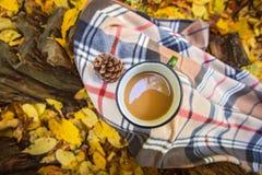 Agrida com café e a cobertura mornos no coto de madeira nas folhas de outono amarelas caídas na floresta, fim de semana exterior, Imagem de Stock