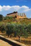 agrigento świątynia Czerwiec Sicily Obrazy Royalty Free